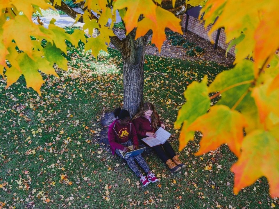 student by tree
