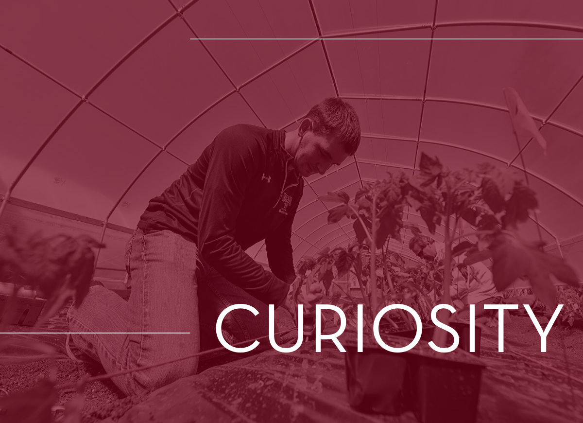 Cultivate Curiosity at the University of Minnesota Crookston