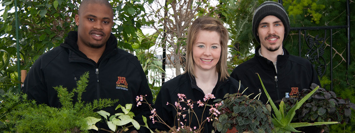 Three students in the greenhouse