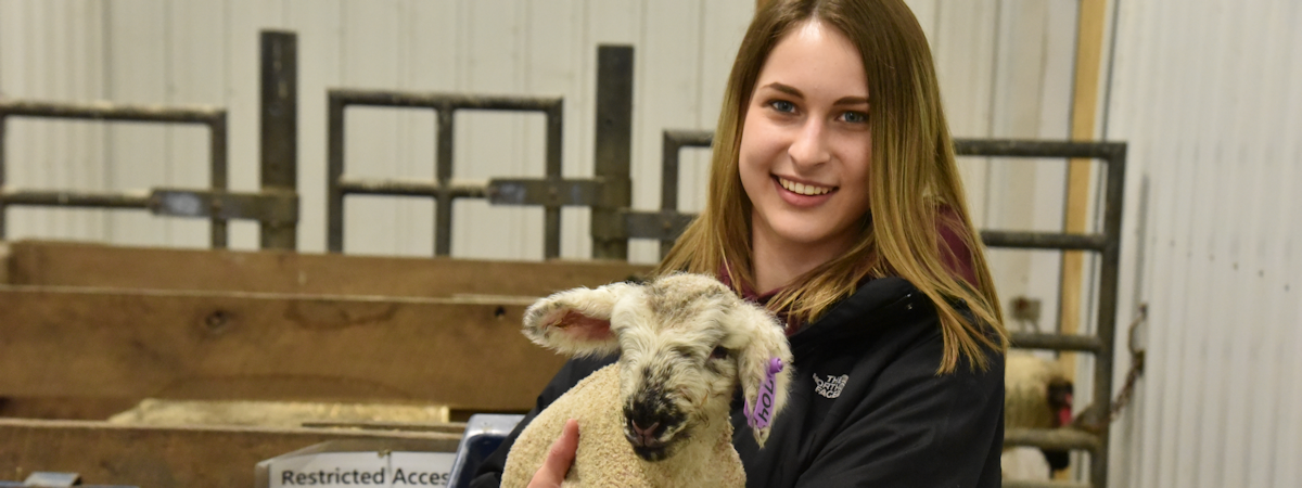 student holding a lamb