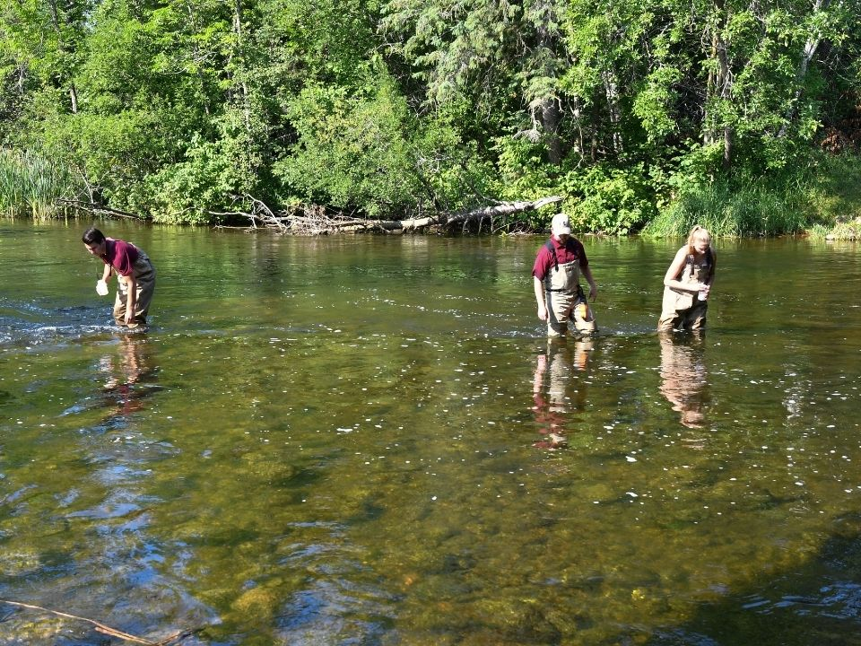 students researching in river