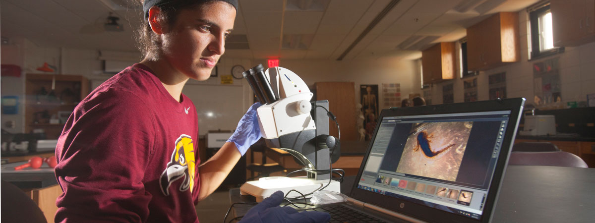 A student is studying with a microscope