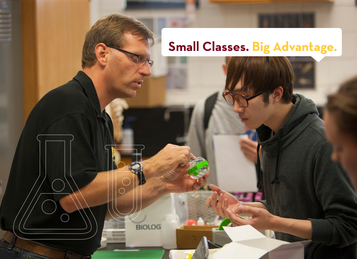 "UMC biology faculty member working with student with tag line ""Small Classes. Big Advantage."""