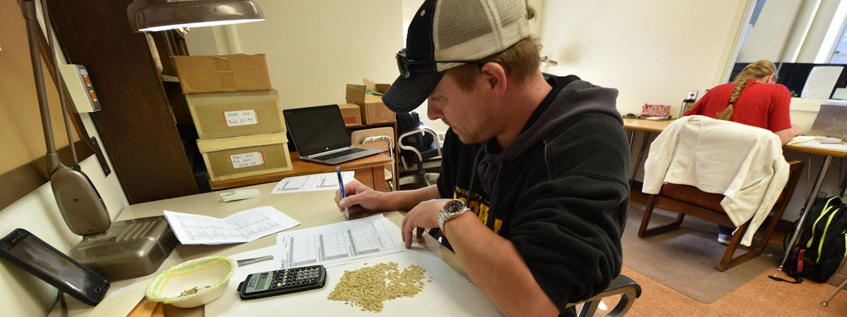 agronomy students grading seed