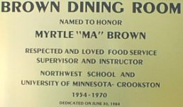 Brown Dinning plate