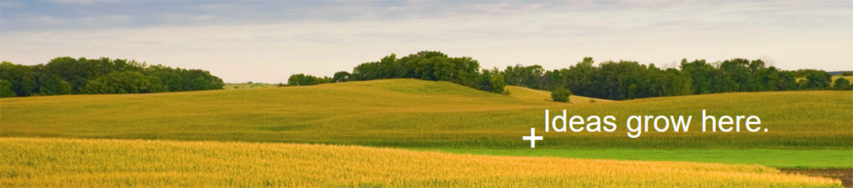 Picturesque view of wheat fields with trees - Center for Entrepreneurial Studies - Ideas Grow Here.