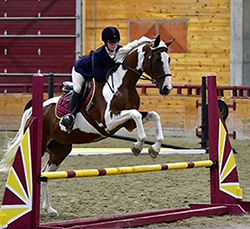 UMC Hunt Seat Athlete riding her horse and jumping in the University of Minnesota Crookston UTOC Arena.