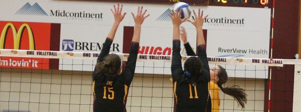 Action Women's Volleyball Picture