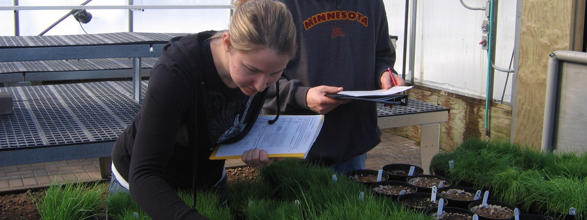 Students grading different types of grass