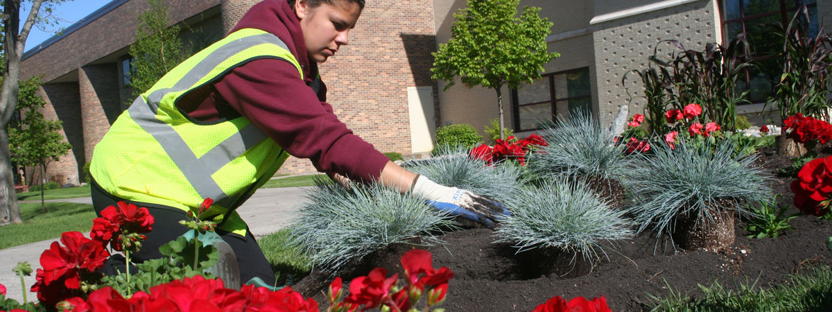 Student planting flowers