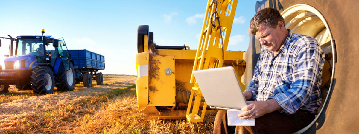 Farmer working on a laptop, sitting on a tractor tire in his field.