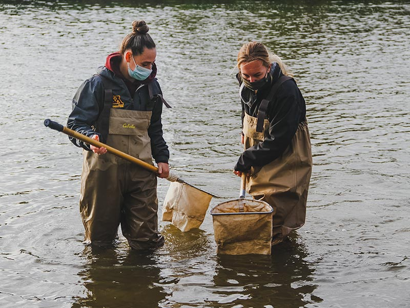 Katie Emmet and fellow student collecting samples in the river.
