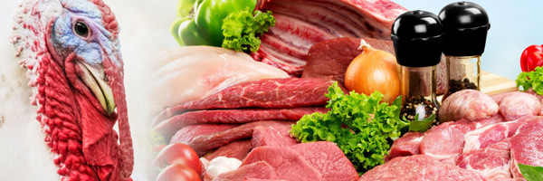 Protein Alliance string of photos - Turkey and table full of fresh meats and vegetables