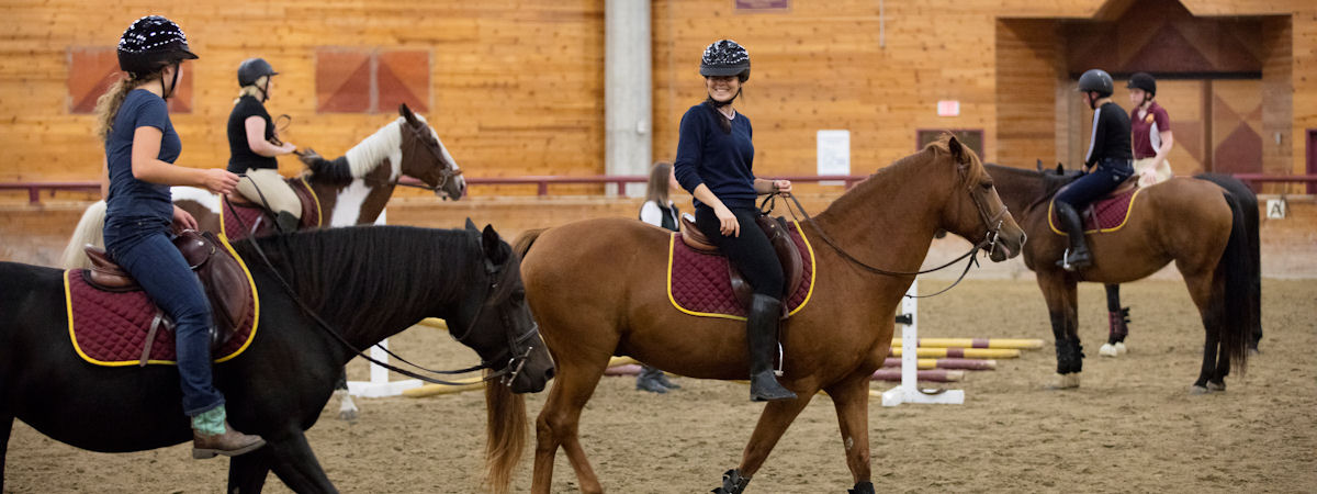 Students learning to ride in the arena