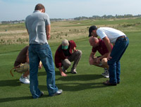 Students looking at grass