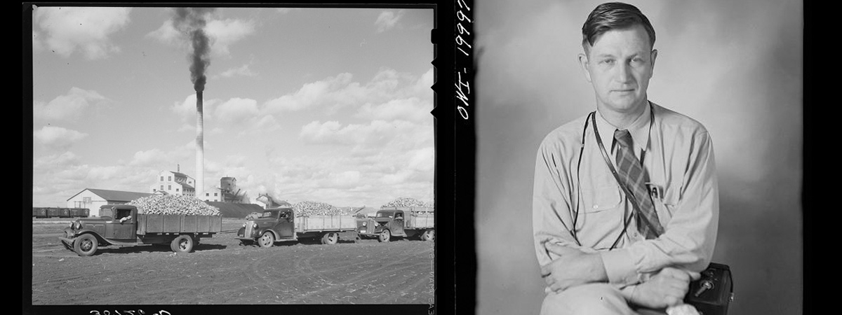 Two black and white photos - one of the 1937 sugarbeet harvest in the Red River Valley and the second is photographer Russell Lee