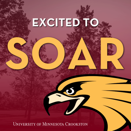 Excited to Soar - Social Media Icon for admitted students