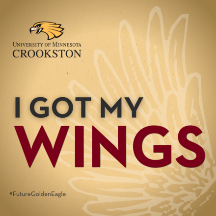 I got my wings (gold background) - Social Media Icon for admitted students