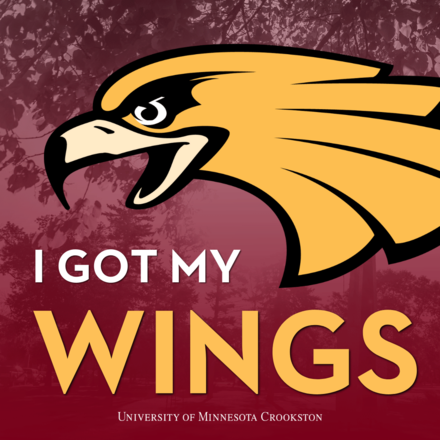 I got my wings - Social Media Icon for admitted students