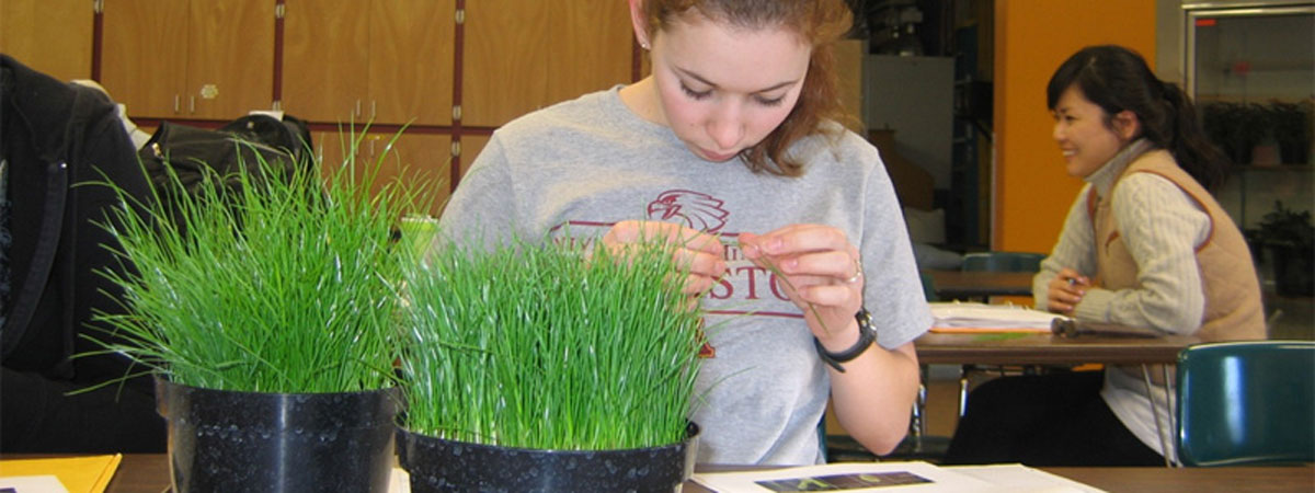 Student studying grass